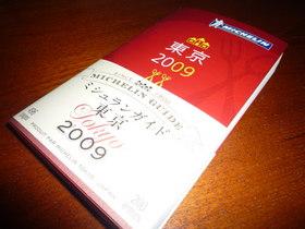 michelin2009.JPG